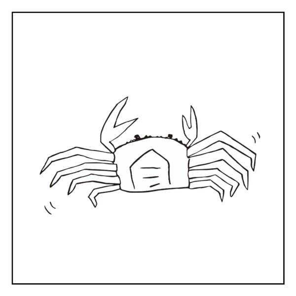 蟹の錯覚(主観)